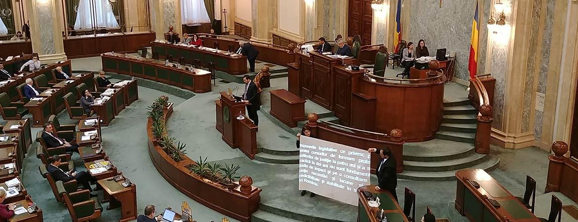 Activitate parlamentară
